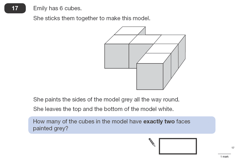 Question 17 Maths KS2 SATs Papers 2008 - Year 6 Past Paper 1, Numbers, Counting, Geometry, 3D shapes, Cubes and Cuboids