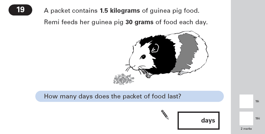 Question 19 Maths KS2 SATs Papers 2003 - Year 6 Sample Paper 1, Numbers, Division, Word Problems, Measurement, Unit Conversions