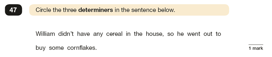 Question 47 SPaG KS2 SATs Papers 2019 - Year 6 English Past Paper 1, Grammatical terms / word classes