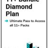 11 Plus Bundle Diamond Plan - All Access Pass