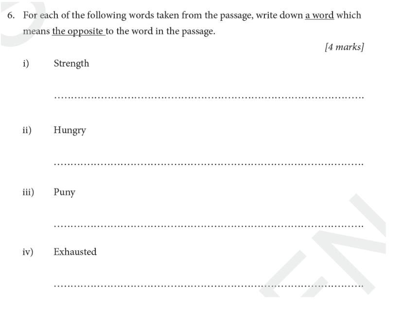St Albans School - 11 Plus English Entrance Exam Paper 2019 Question 06